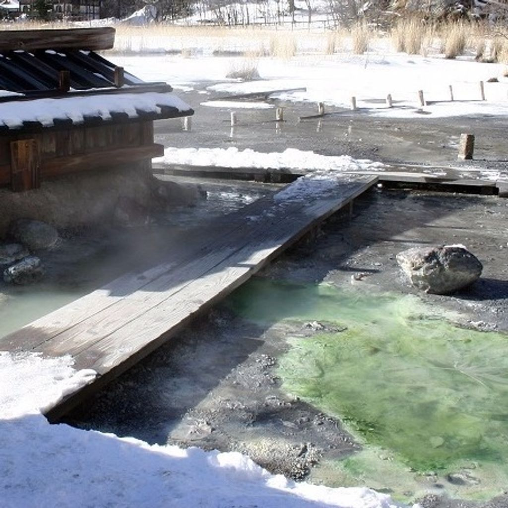 10 Best Onsen Hot Springs Around Tokyo Gowithguide