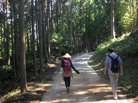 Wakayama Kumano Sanzan Tour (1) as World Cultural Heritage