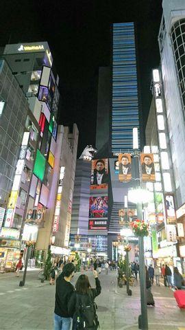 Kahoko's Tokyo