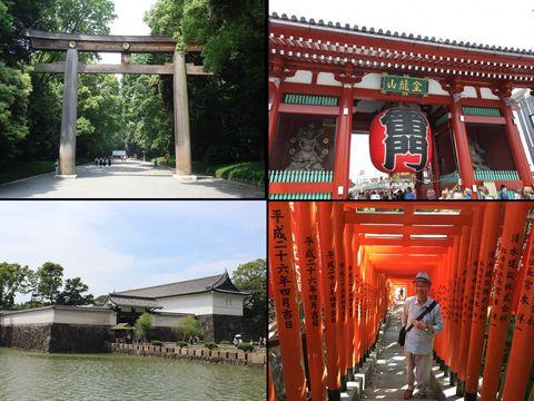 Tokyo tour à la carte half day