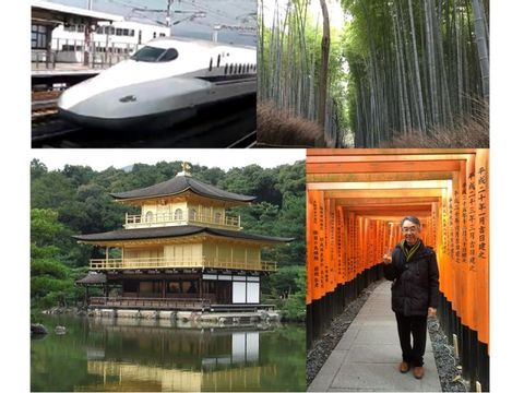 One day  Door to Door tour of Kyoto from Tokyo