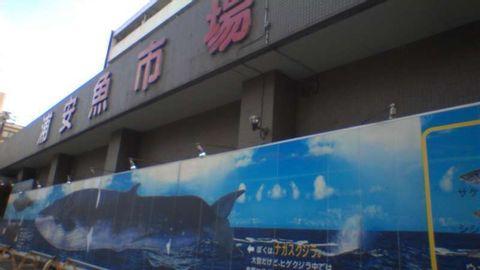 Urayasu (Chiba Prefecture) Tour