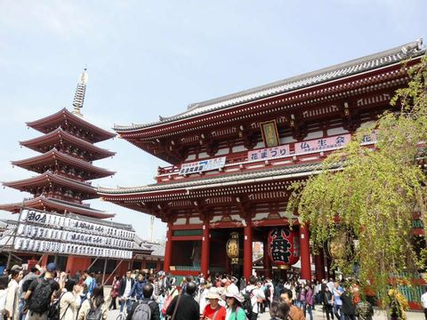 Asakusa & Ueno Awesome Tour