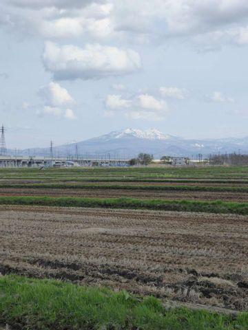Découverte de la ville d'Aomori