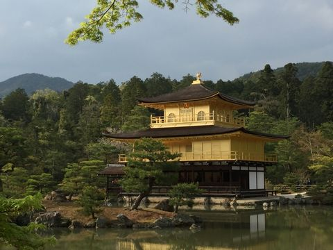 Kyoto One Day Highlights