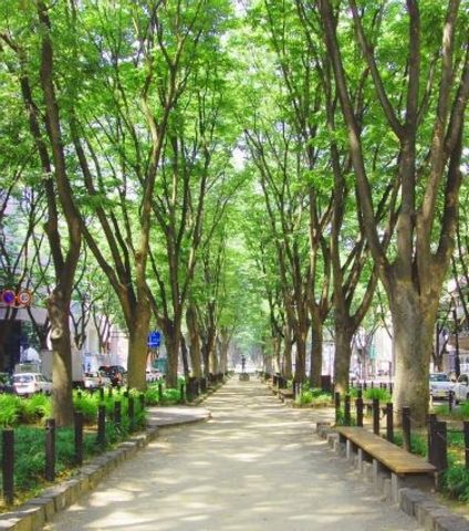 The Highlight of Central Sendai Area