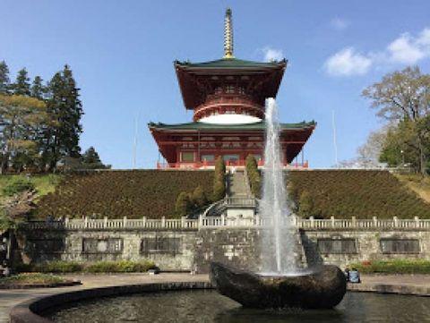 Naritasan Shinshoji Temple walking tour