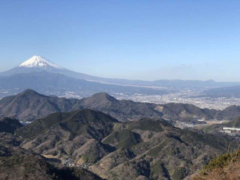 Spectacular view of Mt. Fuji and Tea-Picking Experience in Izu Peninsula!