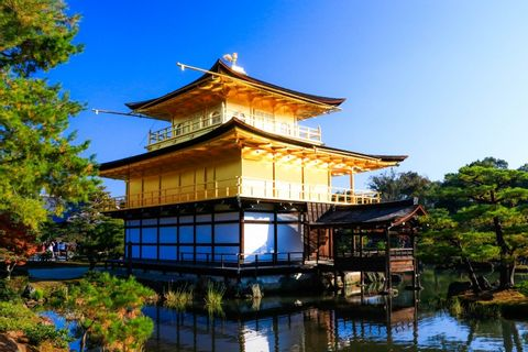 Kyoto sightseeing with a private chartered van (1-18pax)