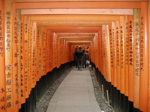 Personalized One-day (8 Hours) Tour in Kyoto