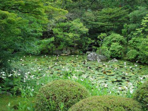 Konchi-in and Tenju-an---beautiful gardens