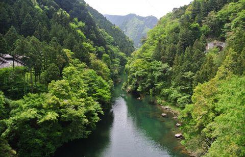 My Favorite Okutama - Lake, River, Mountain, and Arts