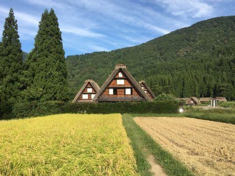 World Heritage Site Tour in Shirakawago & Gokayama