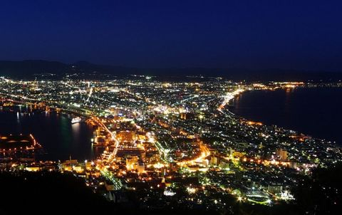 Best of Hakodate with hot spring monkeys and sukiyaki in winter