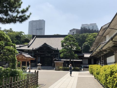 A trip to know spirit of Japanese  by visiting gardens and temples
