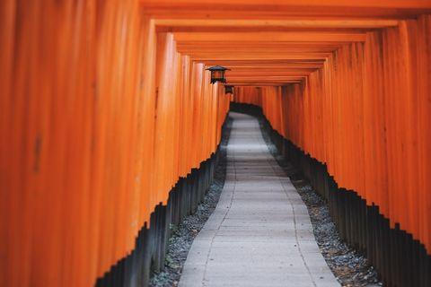 Fushimi Inari shrine ,Kiyomizu temple and Gion tour