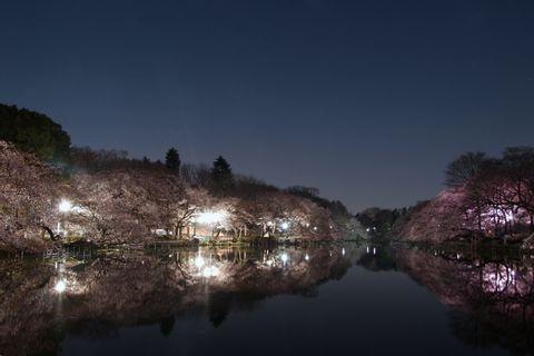 Tokyo Night Walk 3: Kichijoji