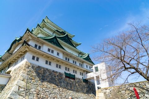 Nagoya: Full-Day Customizable Private Tour with Driver
