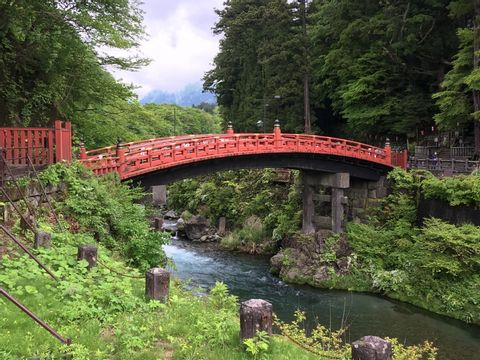 Exciting Nikko - Online Tour