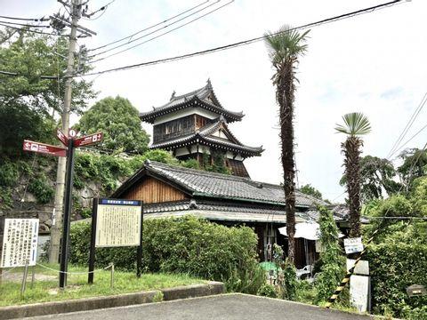 Expérience Unique Poissons Rouges d'une Journée à Koriyama