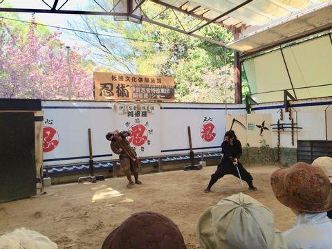 Full-Day Ninja Unique Experience in Iga