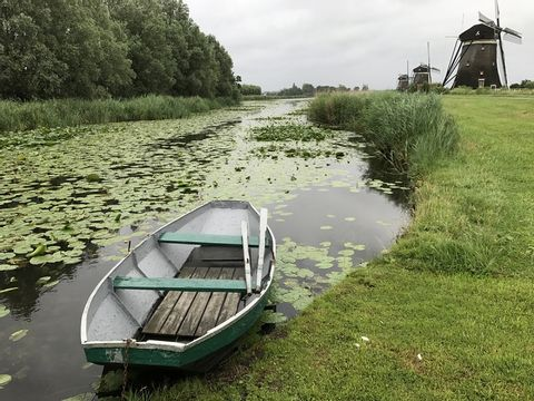 Amsterdam, the Hague, Delft and the Green Heart of Holland