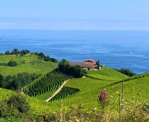 Private Tour along the Basque Coast & Countryside