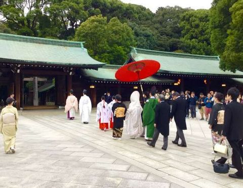 Experience Japanese culture - Making Japanese homestyle cooking and strolling Meiji Shrine