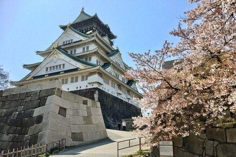 Visite Guidée Privée d'une Journée du Château d'Osaka
