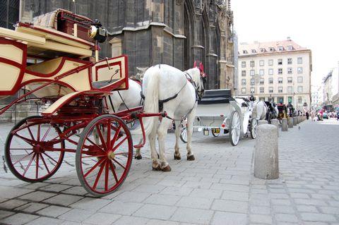 Best of Vienna Walking Tour