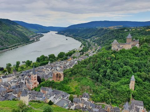 Excursion to the Romantic Rhine Valley with wine tasting
