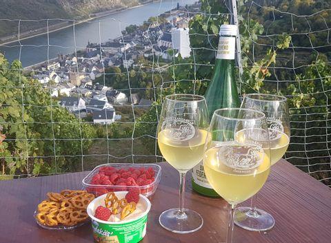 Wine Adventure Tour- Rhine Valley