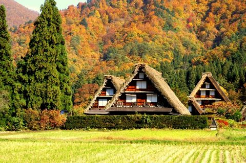 Request a Personalized Gifu Tour Itinerary