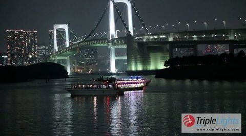 The Magical Lights of Tokyo (with Video)