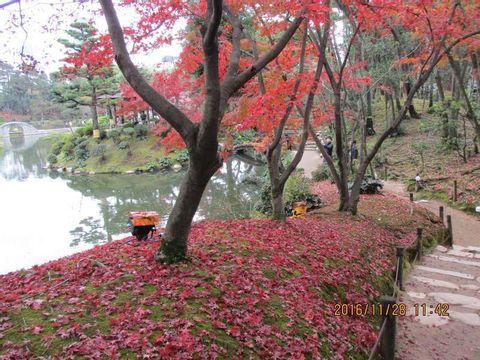 Hiroshima City Sightseeing