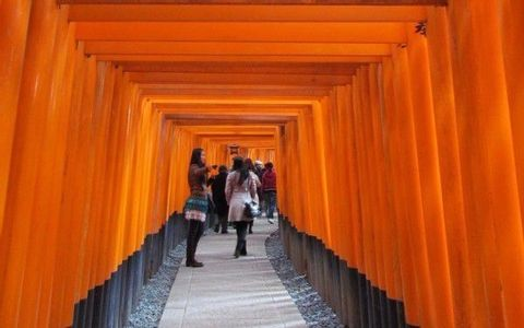 Kyoto Golden Route (Fushimi Inari, Kiyomizudera, Kinkakuji, Nijo Castle)