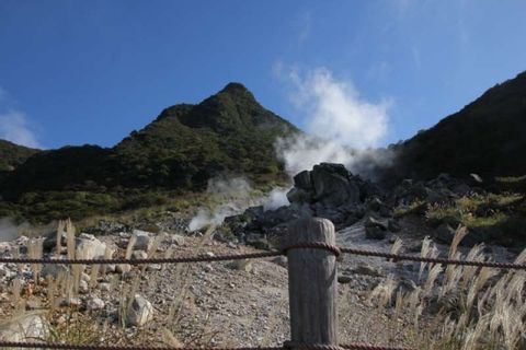 Hakone sightseeing with a private chartered van (1-18pax)