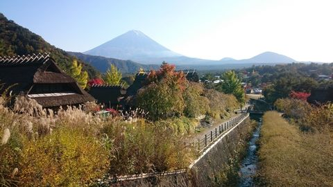 One day - Private Tour in Mt.Fuji Area