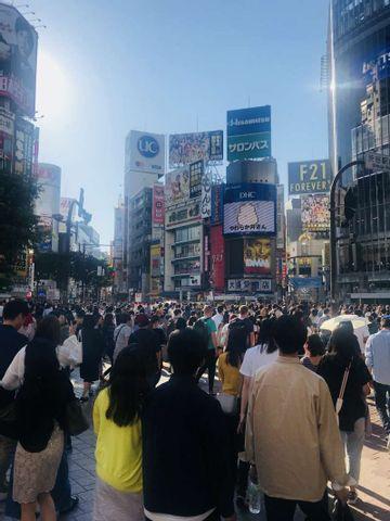 Excursión 3 (Harajuku, Omotesando, Santuario de Meiji, Shinjuku, Shibuya)