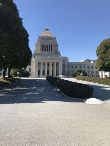 Excursión 4 (Santuario Hie, Cámara Alta, Cámara Baja, Parque de Hibiya)