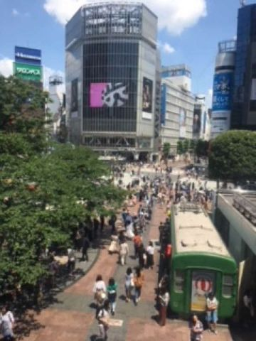 Shibuya, Harajuku and Shinjuku Triangle Tour