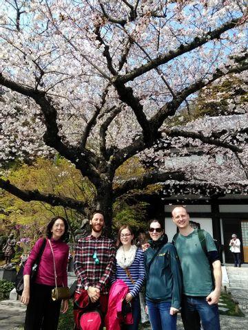 A Day Excursion to Kamakura