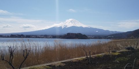 One day - Mt.Fuji and Gotenba Premium Outlet Tour