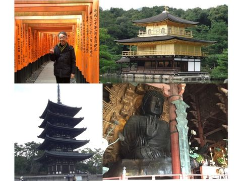 Two days  Door to Door tour of Kyoto & Nara from Tokyo