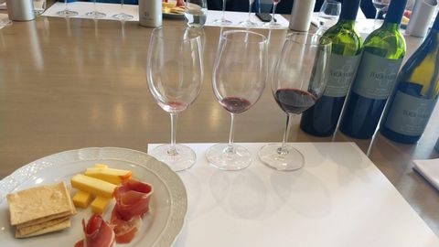 Argentinean Wine Tasting with Vicente