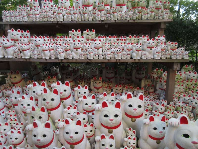 Countless cats at Gotoku-ji, known as Lucky Cat Temple.