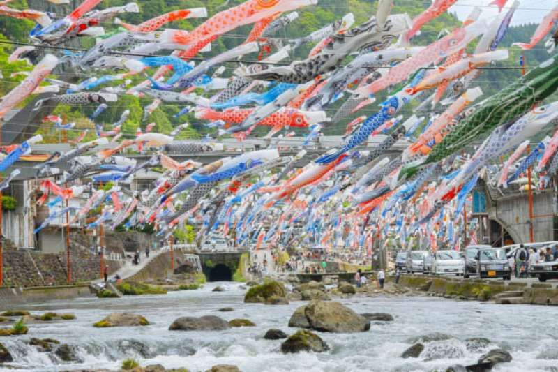 Carp-shaped streamers 
