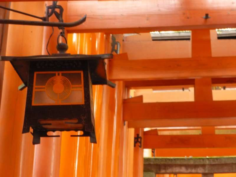 Fushimi Inari Grand Shrine located at the foot of east mountains is the most popular sight-seeing spot in Kyoto. I recommend you go there in the early morning, so you could feel the calm and sacred atmosphere.