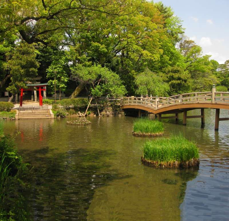 Parks and gardens in Tokyo where people enjoy on holiday