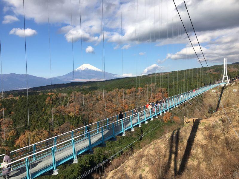 A splendid view of Mt. Fuji from Mishima Skywalk.